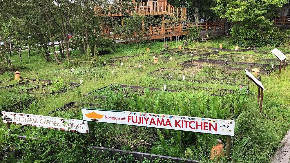 山中湖PICAヴィレッジのハンモックカフェの家庭菜園