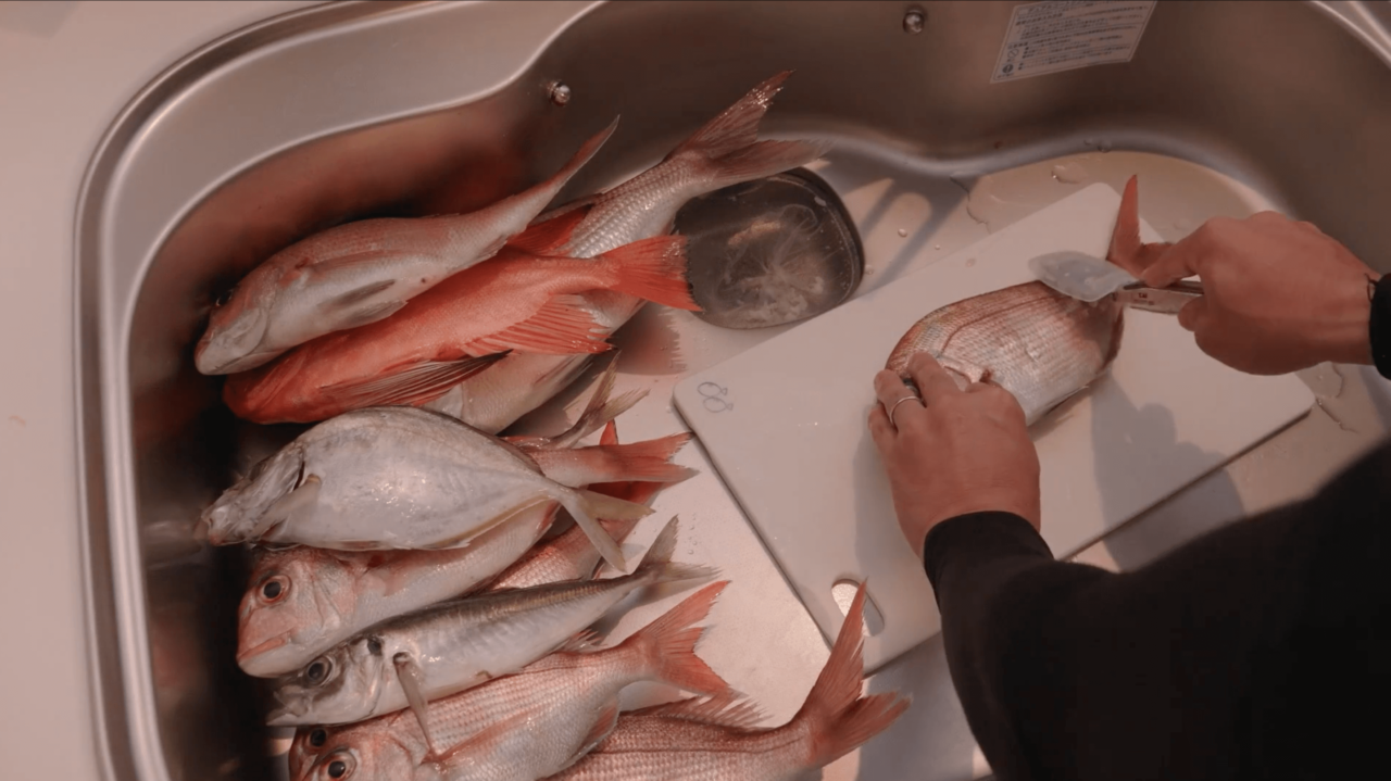 魚の鱗取り
