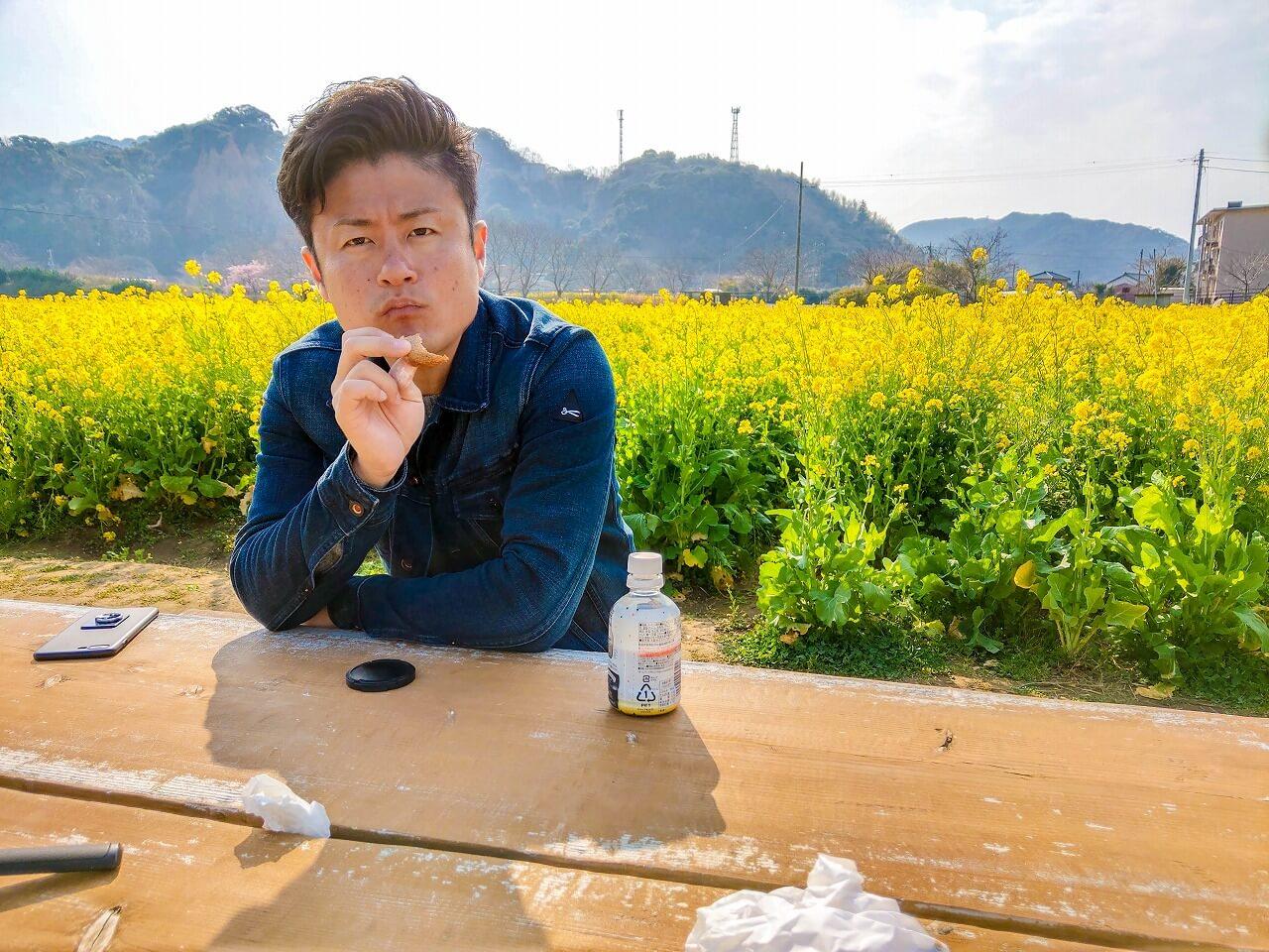 日野の菜の花畑 ベンチで食事