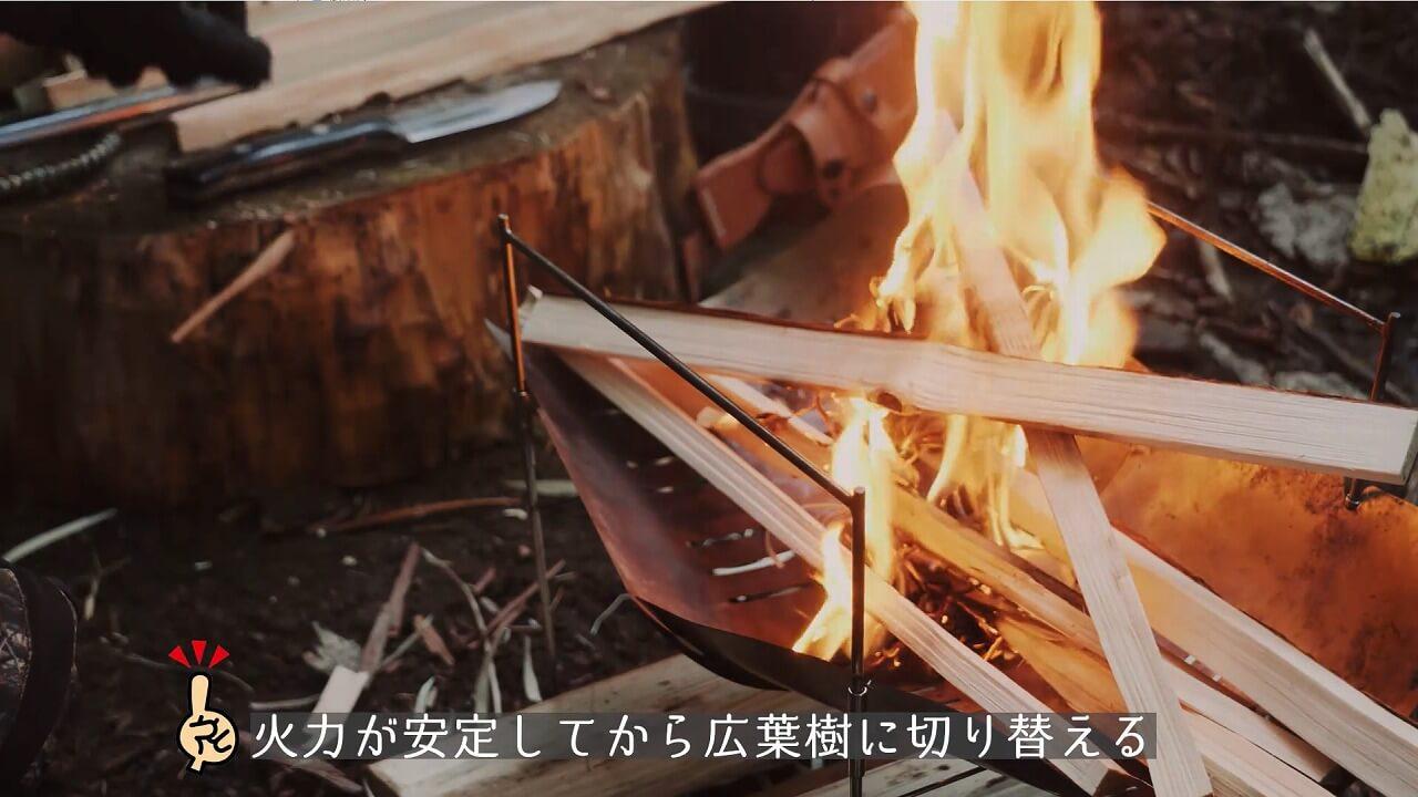 焚き火は針葉樹と広葉樹の使い分けがポイント