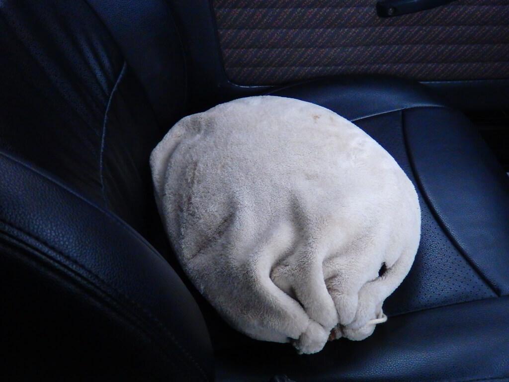 助手席置き場所がない湯たんぽ