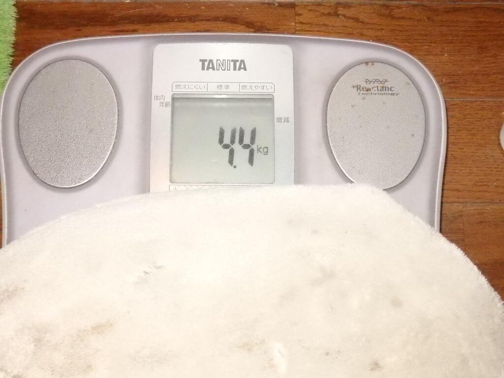 湯たんぽA 使用時の重さ
