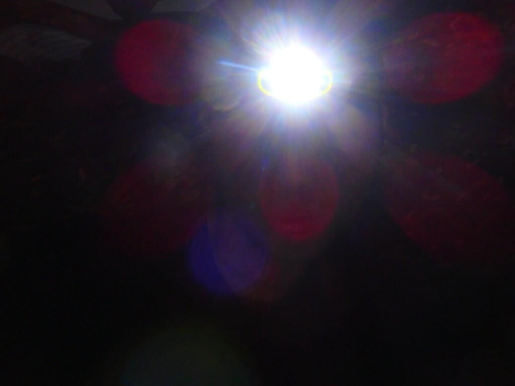 ヘッドライトで照らされた視界