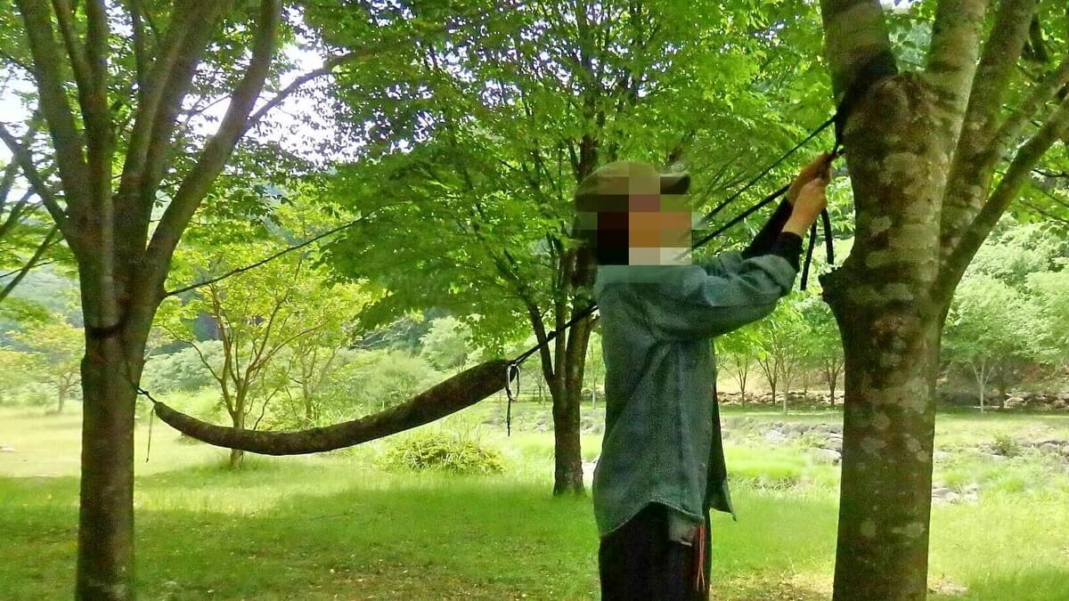 木に紐を巻きつける